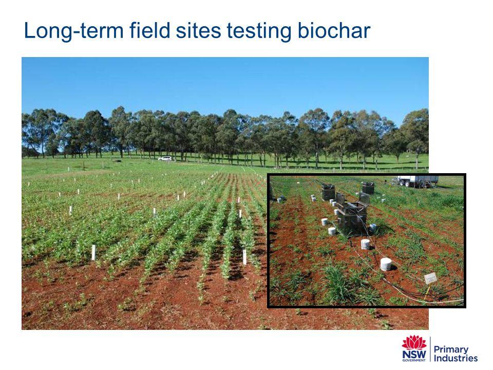Long-term field sites testing biochar