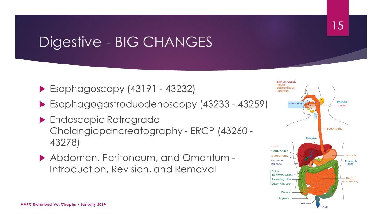 Digestive - BIG CHANGES  Esophagoscopy (43191 - 43232)  Esophagogastroduodenoscopy (43233 - 43259)  Endoscopic Retrograde Cholangiopancreatography - ERCP (43260 - 43278)  Abdomen, Peritoneum, and Omentum - Introduction, Revision, and Removal AAPC Richmond Va.