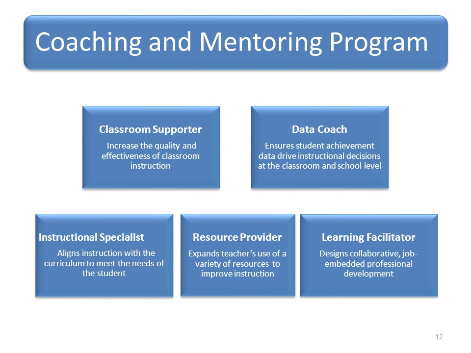 Coaching and Mentoring Program Classroom Supporter Increase the quality and effectiveness of classroom instruction Data Coach Ensures student achievement data drive instructional decisions at the classroom and school level Resource Provider Expands teacher's use of a variety of resources to improve instruction Instructional Specialist Aligns instruction with the curriculum to meet the needs of the student Learning Facilitator Designs collaborative, job- embedded professional development 12