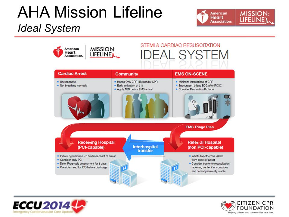 AHA Mission Lifeline Ideal System