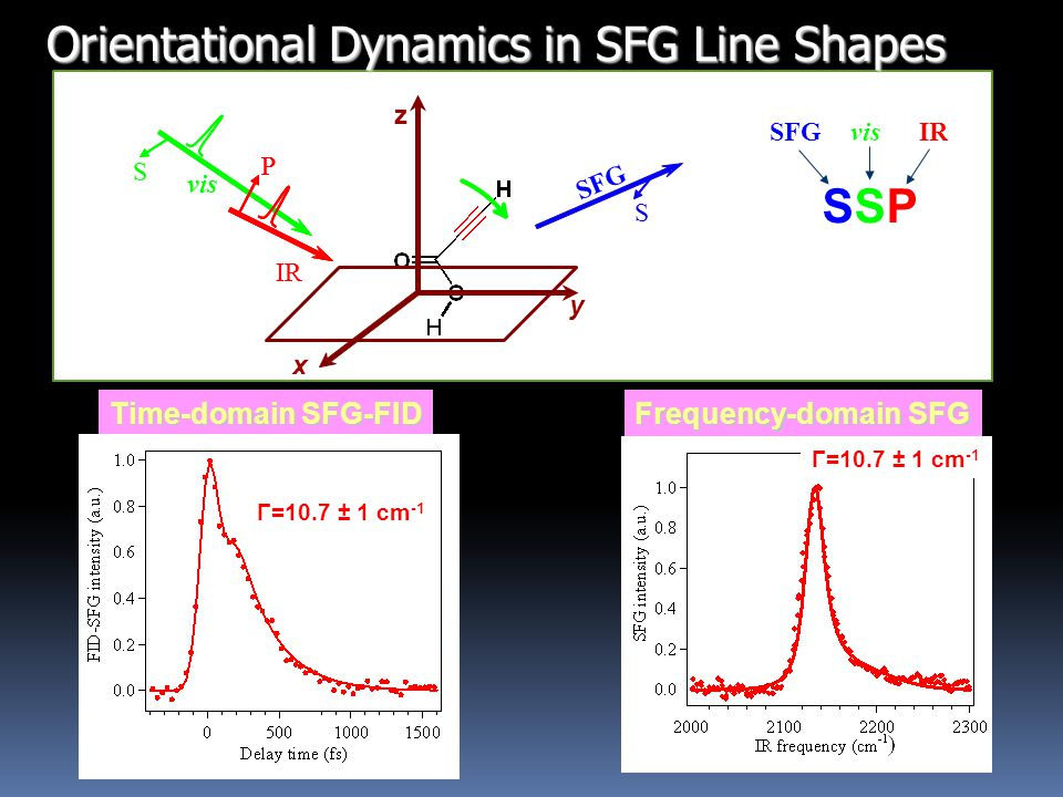 Time-domain SFG-FID Frequency-domain SFG SSPSSP visIRSFG S z x S y vis IR P S vis IR PP S Γ=10.7 ± 1 cm -1 Orientational Dynamics in SFG Line Shapes