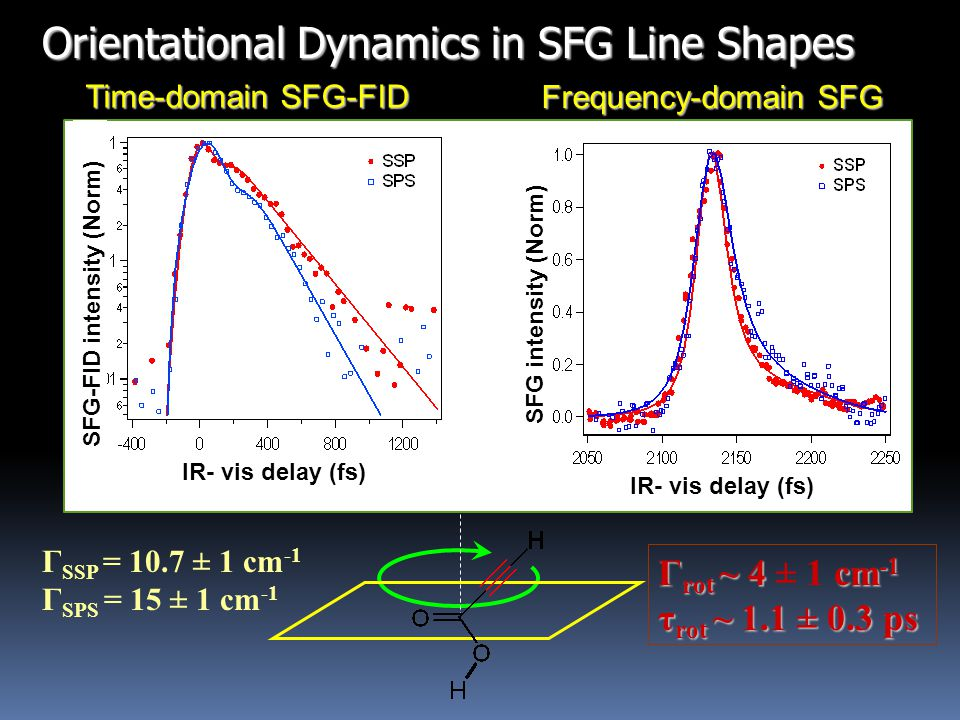 Time-domain SFG-FID Frequency-domain SFG Γ SSP = 10.7 ± 1 cm -1 Γ SPS = 15 ± 1 cm -1 Γ rot ~ 4 cm -1 Γ rot ~ 4 ± 1 cm -1 τ rot ~ 1.1 ± 0.3 ps SFG intensity (Norm) IR- vis delay (fs) SFG-FID intensity (Norm) IR- vis delay (fs)