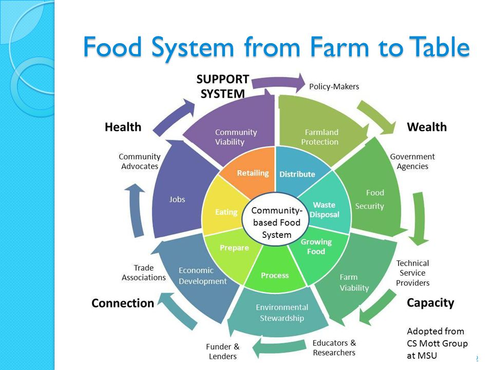 Food System from Farm to Table 2