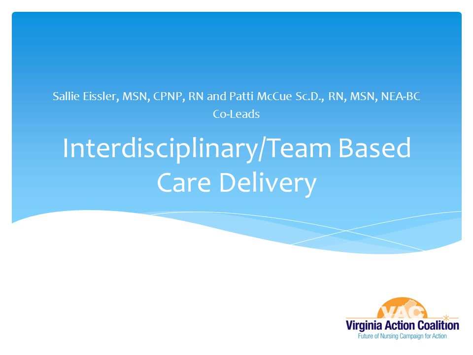 Interdisciplinary/Team Based Care Delivery Sallie Eissler, MSN, CPNP, RN and Patti McCue Sc.D., RN, MSN, NEA-BC Co-Leads