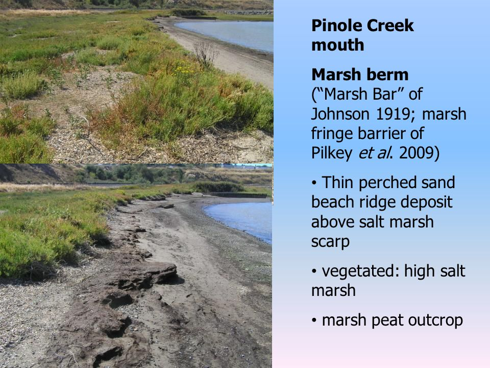 Pinole Creek mouth Marsh berm ( Marsh Bar of Johnson 1919; marsh fringe barrier of Pilkey et al.
