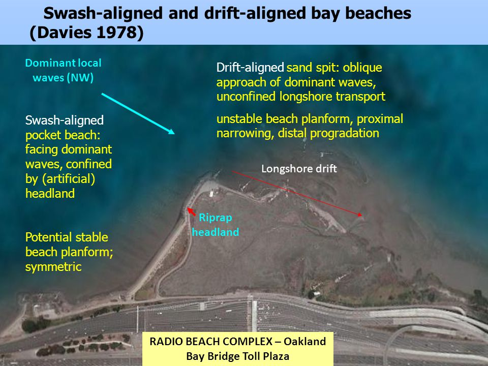 Swash-aligned and drift-aligned bay beaches (Davies 1978) Swash-aligned pocket beach: facing dominant waves, confined by (artificial) headland Potential stable beach planform; symmetric Dominant local waves (NW) Longshore drift RADIO BEACH COMPLEX – Oakland Bay Bridge Toll Plaza Riprap headland Drift-aligned sand spit: oblique approach of dominant waves, unconfined longshore transport unstable beach planform, proximal narrowing, distal progradation