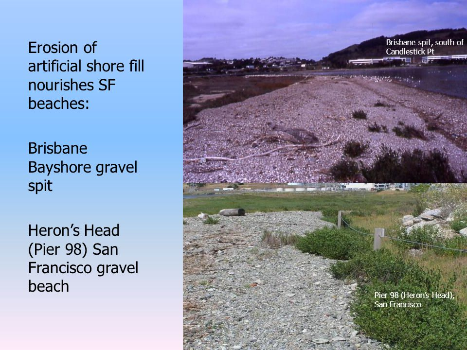 Erosion of artificial shore fill nourishes SF beaches: Brisbane Bayshore gravel spit Heron's Head (Pier 98) San Francisco gravel beach Brisbane spit, south of Candlestick Pt Pier 98 (Heron's Head), San Francisco
