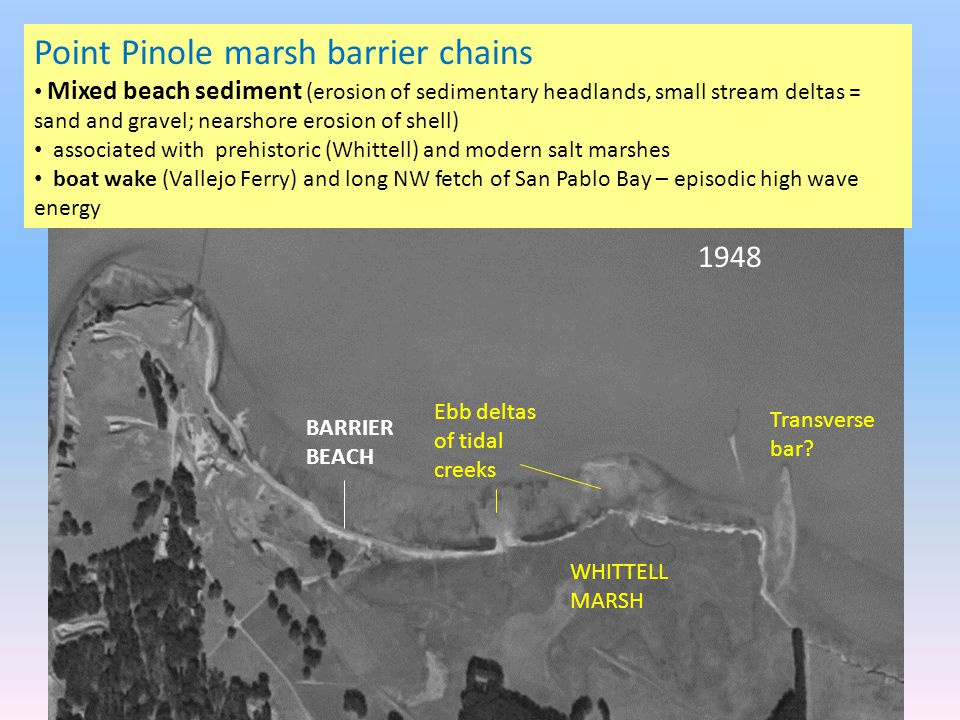 Point Pinole marsh barrier chains Mixed beach sediment (erosion of sedimentary headlands, small stream deltas = sand and gravel; nearshore erosion of shell) associated with prehistoric (Whittell) and modern salt marshes boat wake (Vallejo Ferry) and long NW fetch of San Pablo Bay – episodic high wave energy Transverse bar.