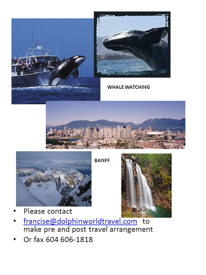 Please contact francise@dolphinworldtravel.com to make pre and post travel arrangement francise@dolphinworldtravel.com Or fax 604 606-1818 WHALE WATCHING BANFF