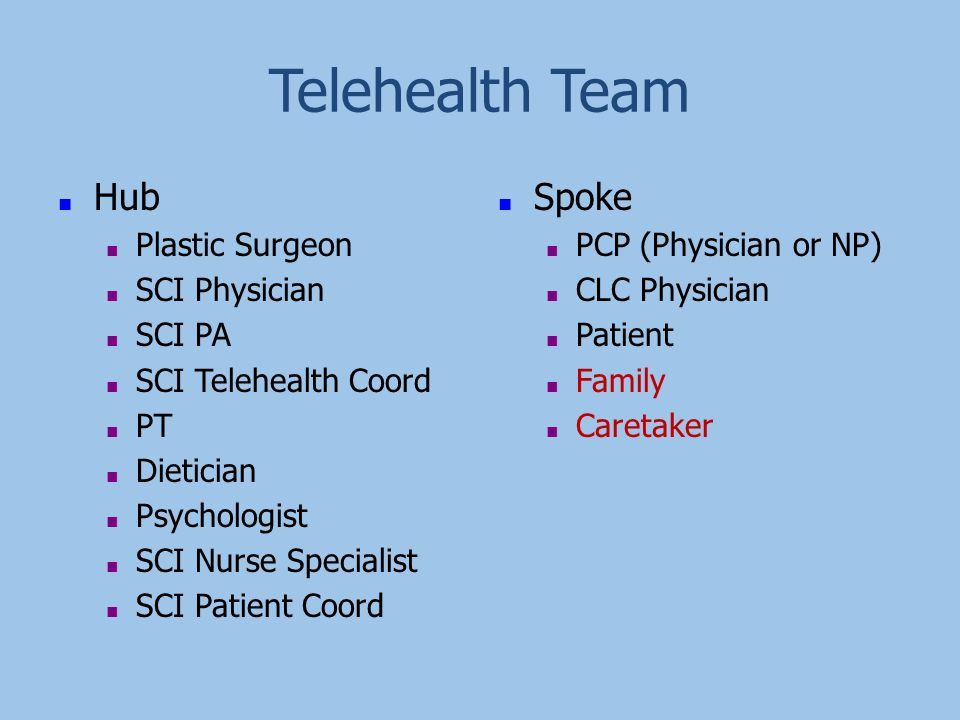 Telehealth Team ■ Hub ■ Plastic Surgeon ■ SCI Physician ■ SCI PA ■ SCI Telehealth Coord ■ PT ■ Dietician ■ Psychologist ■ SCI Nurse Specialist ■ SCI P