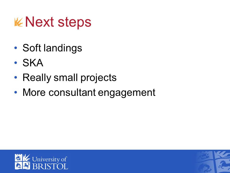 Next steps Soft landings SKA Really small projects More consultant engagement