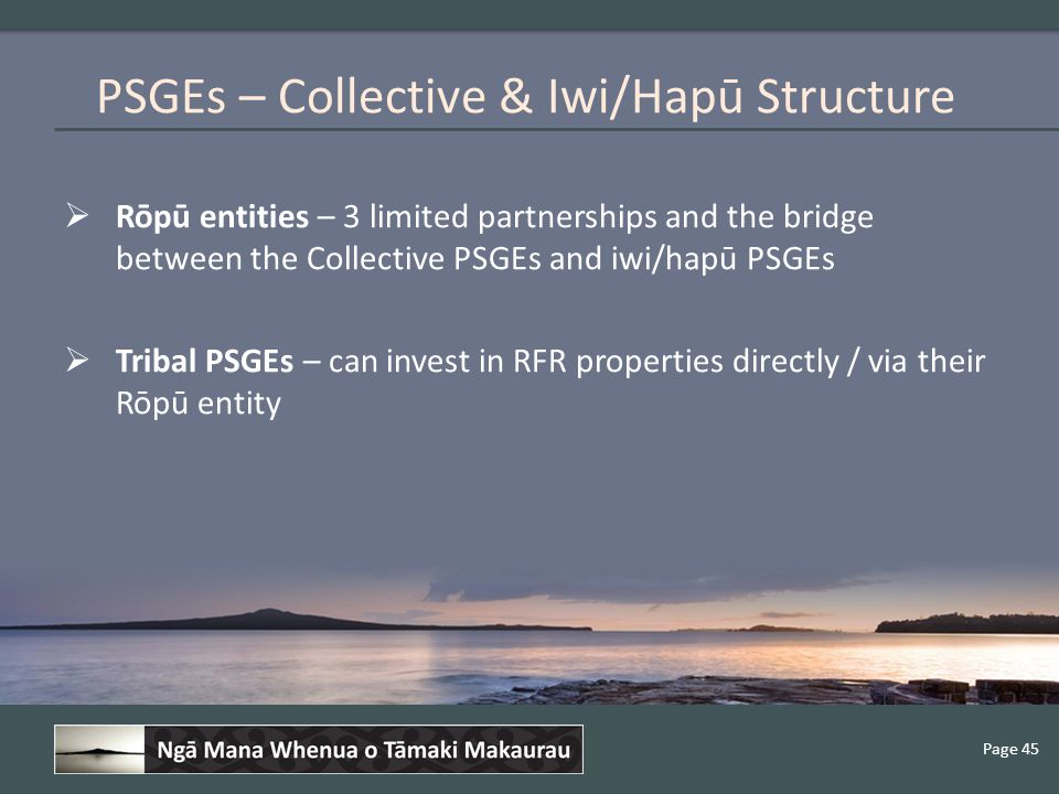 Page 45  Rōpū entities – 3 limited partnerships and the bridge between the Collective PSGEs and iwi/hapū PSGEs  Tribal PSGEs – can invest in RFR properties directly / via their Rōpū entity PSGEs – Collective & Iwi/Hapū Structure