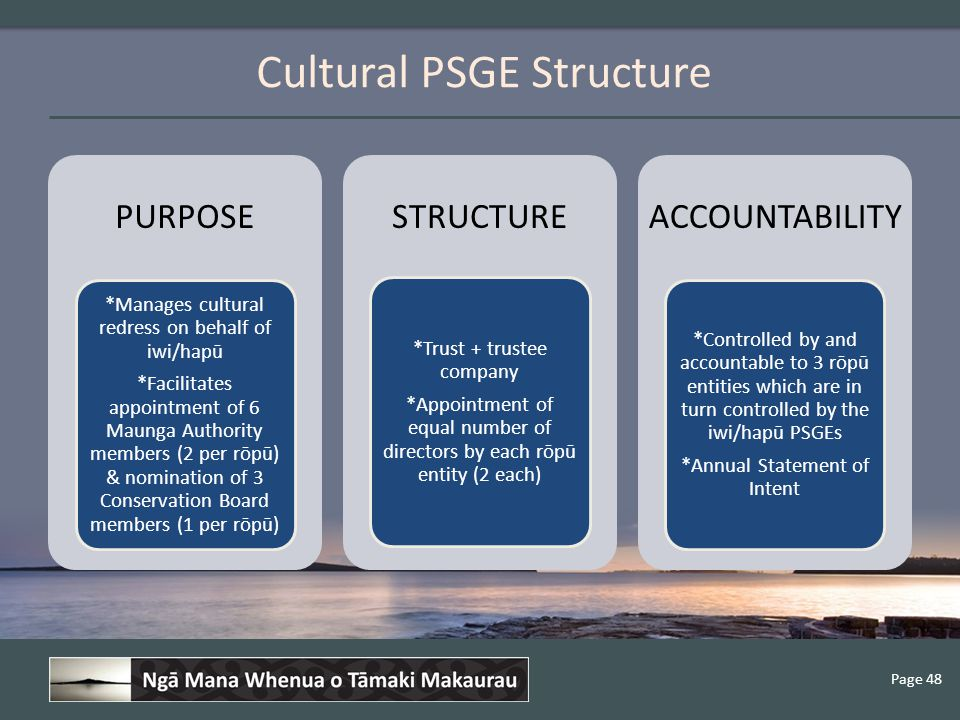 Page 48 Cultural PSGE Structure PURPOSE *Manages cultural redress on behalf of iwi/hapū *Facilitates appointment of 6 Maunga Authority members (2 per rōpū) & nomination of 3 Conservation Board members (1 per rōpū) STRUCTURE *Trust + trustee company *Appointment of equal number of directors by each rōpū entity (2 each) ACCOUNTABILITY *Controlled by and accountable to 3 rōpū entities which are in turn controlled by the iwi/hapū PSGEs *Annual Statement of Intent