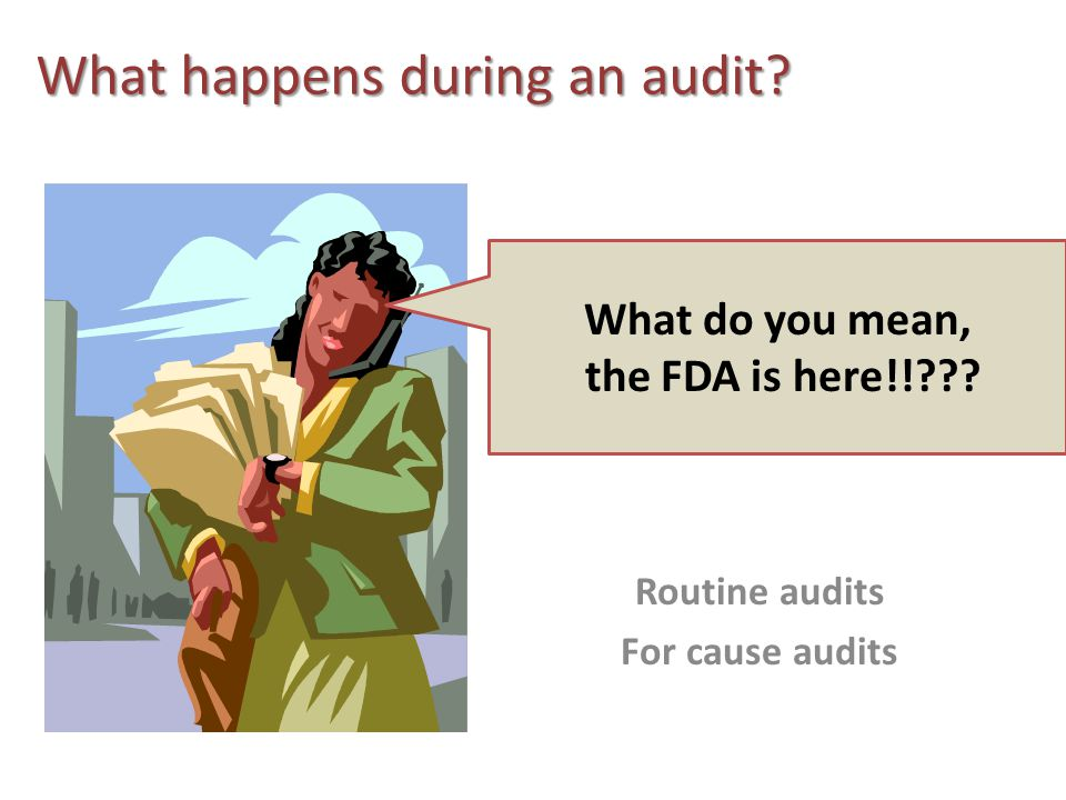What happens during an audit. What do you mean, the FDA is here!! .