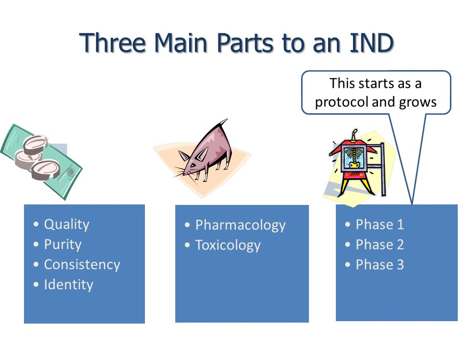Three Main Parts to an IND This starts as a protocol and grows