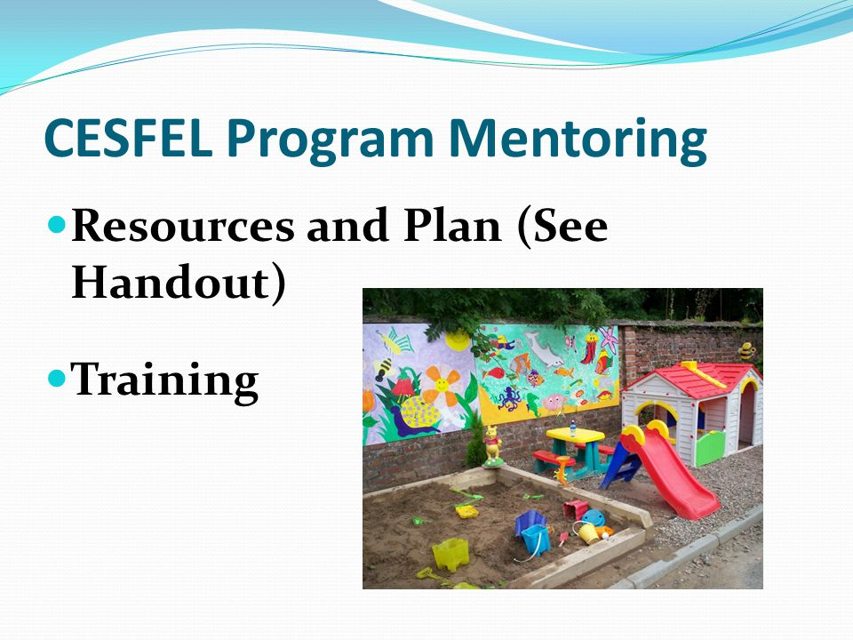 CESFEL Program Mentoring Resources and Plan (See Handout) Training