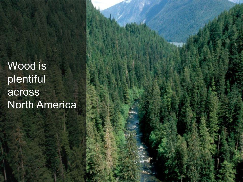 Wood is plentiful across North America