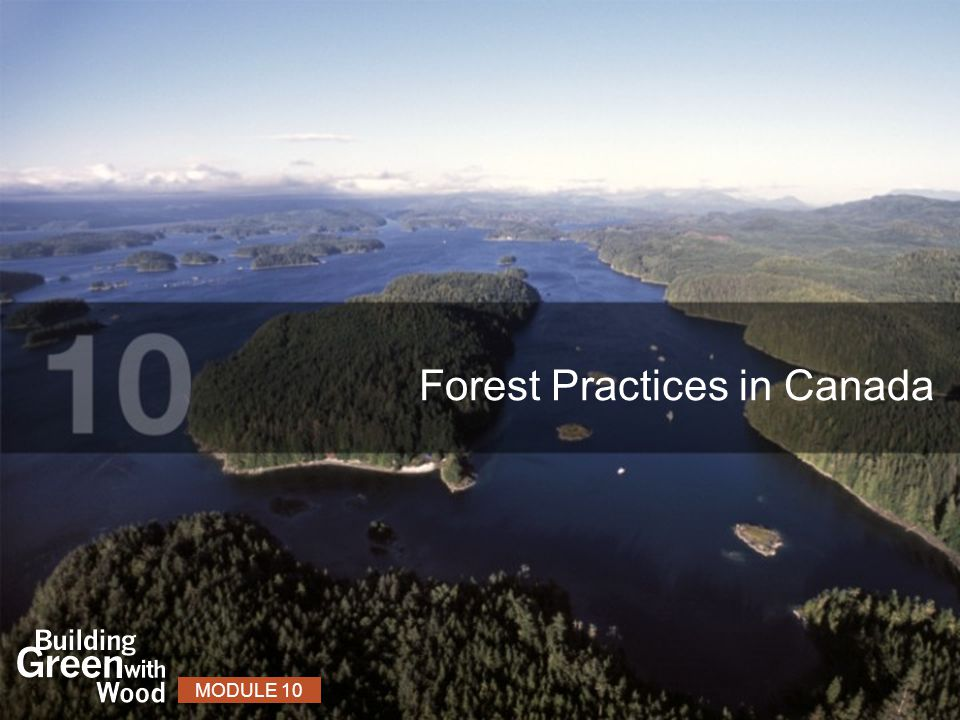 Forest Practices in Canada MODULE 10