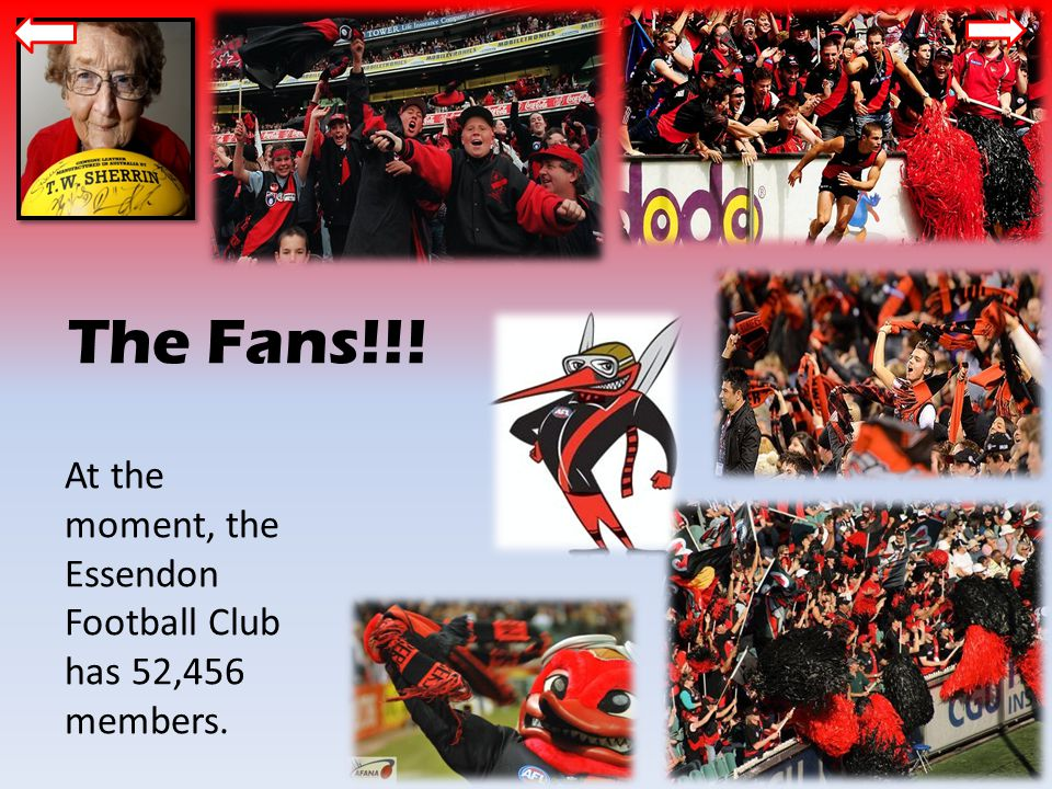 The Fans!!! At the moment, the Essendon Football Club has 52,456 members.