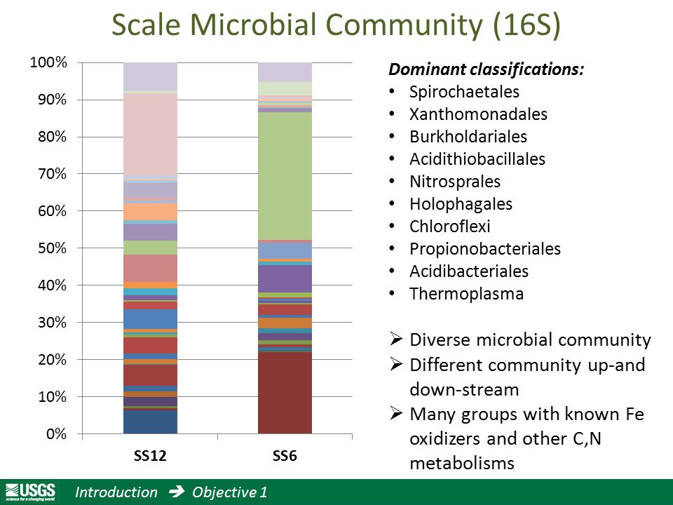 Scale Microbial Community (16S) Dominant classifications: Spirochaetales Xanthomonadales Burkholdariales Acidithiobacillales Nitrosprales Holophagales Chloroflexi Propionobacteriales Acidibacteriales Thermoplasma  Diverse microbial community  Different community up-and down-stream  Many groups with known Fe oxidizers and other C,N metabolisms Introduction  Objective 1