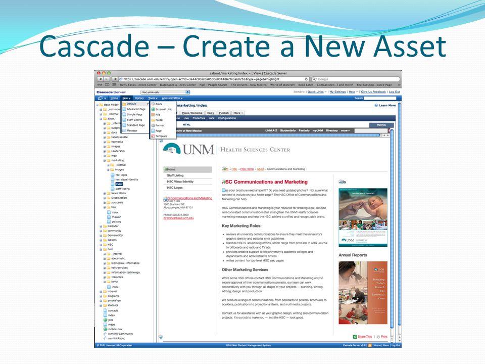 Cascade – Create a New Asset