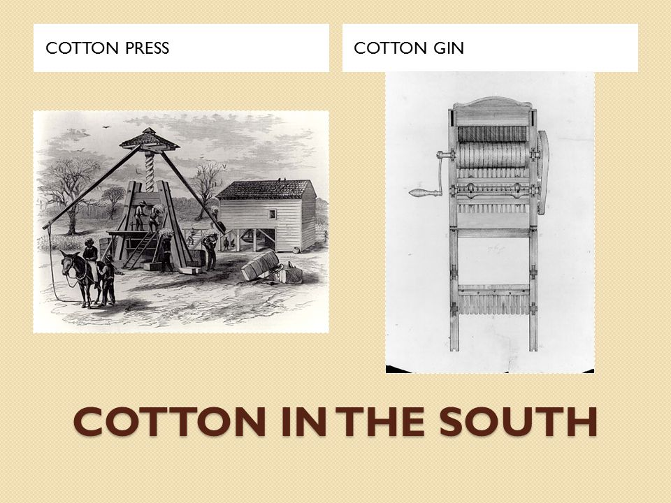 LESSON 1: Factory vs.Plantation Things to Think About: 1.
