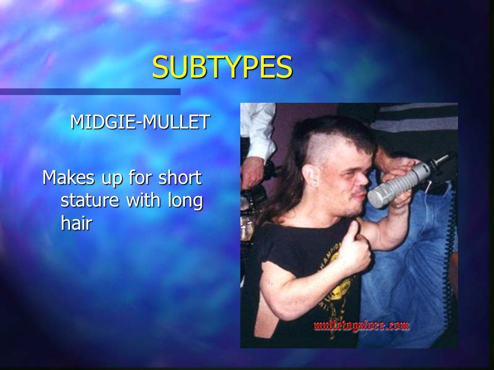 SUBTYPES MIDGIE-MULLET Makes up for short stature with long hair