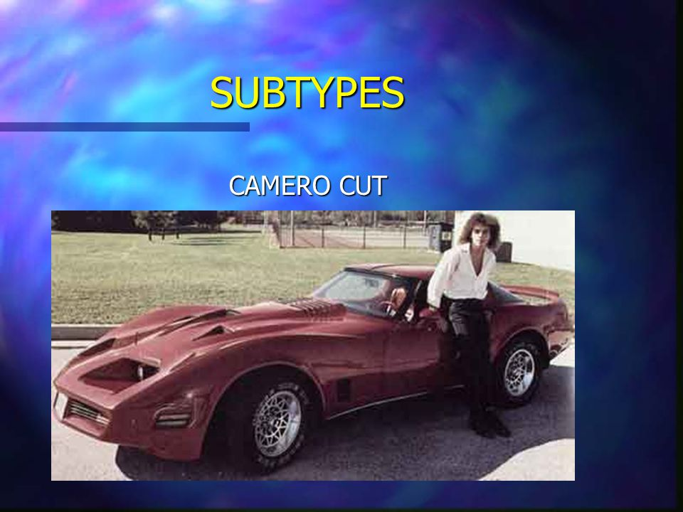 SUBTYPES CAMERO CUT Common among drivers of Chevy Cameros, as well as Trans Am's and Thunderbirds