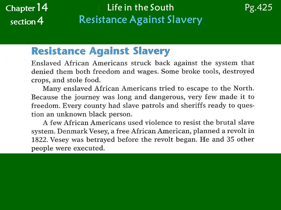 Life in the South Resistance Against Slavery Chapter 14 section 4 Pg.425