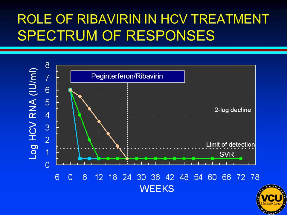 ROLE OF RIBAVIRIN IN HCV TREATMENT SPECTRUM OF RESPONSES SVR 2-log decline Peginterferon/Ribavirin Limit of detection