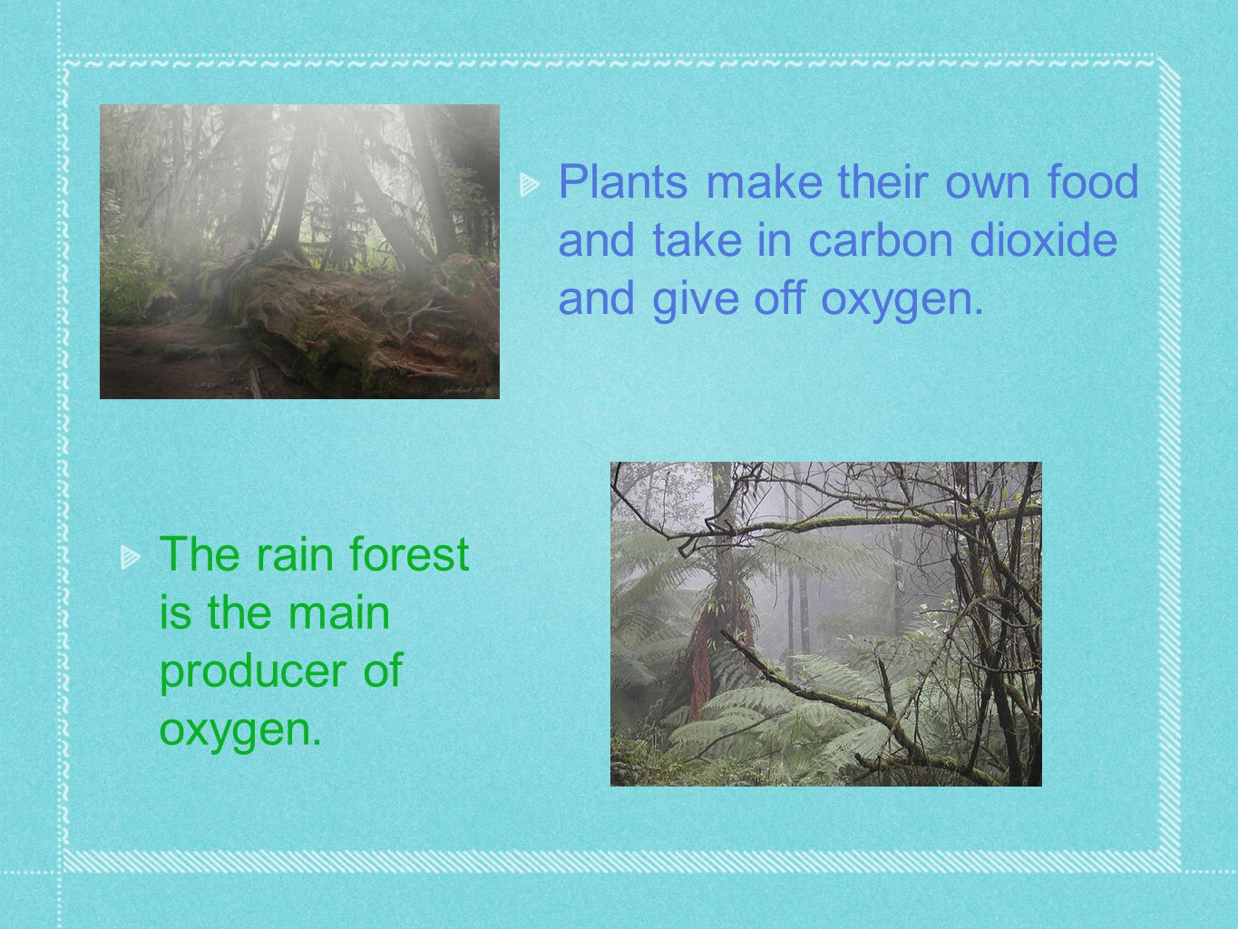 Plants make their own food and take in carbon dioxide and give off oxygen. The rain forest is the main producer of oxygen.