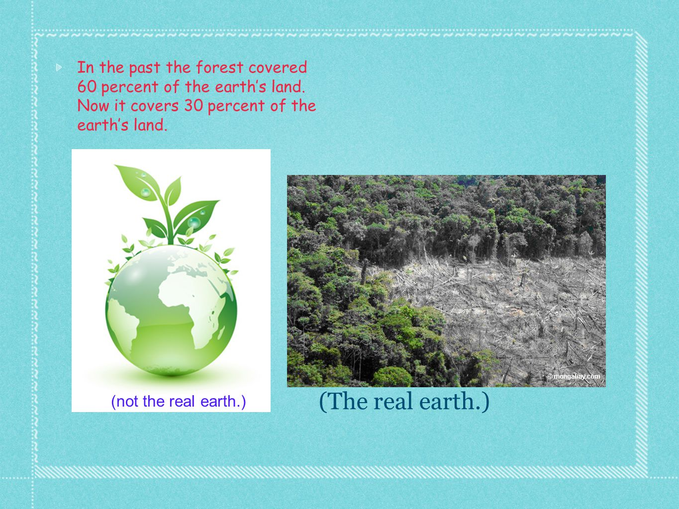 In the past the forest covered 60 percent of the earth's land. Now it covers 30 percent of the earth's land. (not the real earth.) (The real earth.)