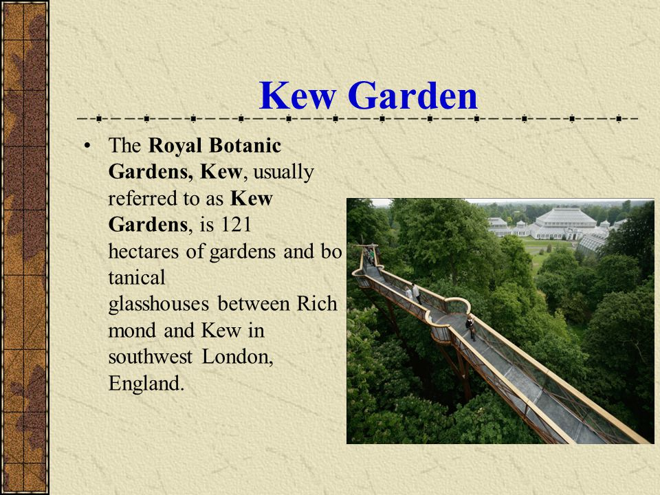 Kew Garden The Royal Botanic Gardens, Kew, usually referred to as Kew Gardens, is 121 hectares of gardens and bo tanical glasshouses between Rich mond and Kew in southwest London, England.