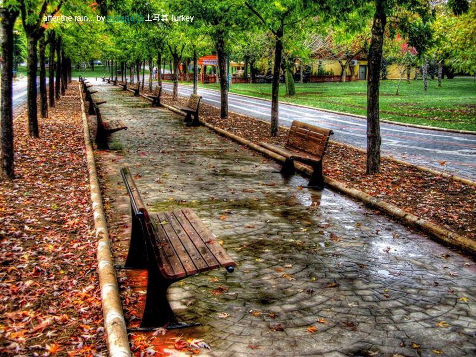 after the rain... by nirvana73 土耳其 Turkeynirvana73