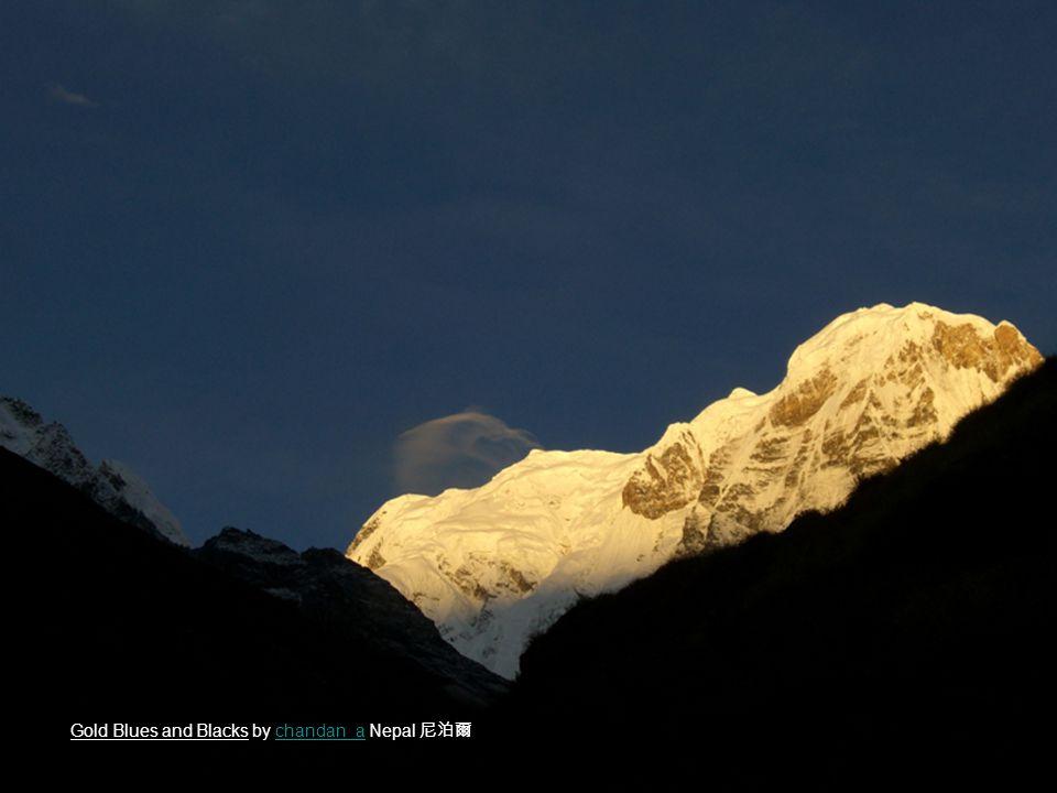 Gold Blues and Blacks by chandan_a Nepal 尼泊爾chandan_a