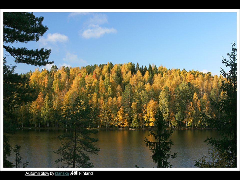 Autumn glow by ktanska 芬蘭 Finlandktanska