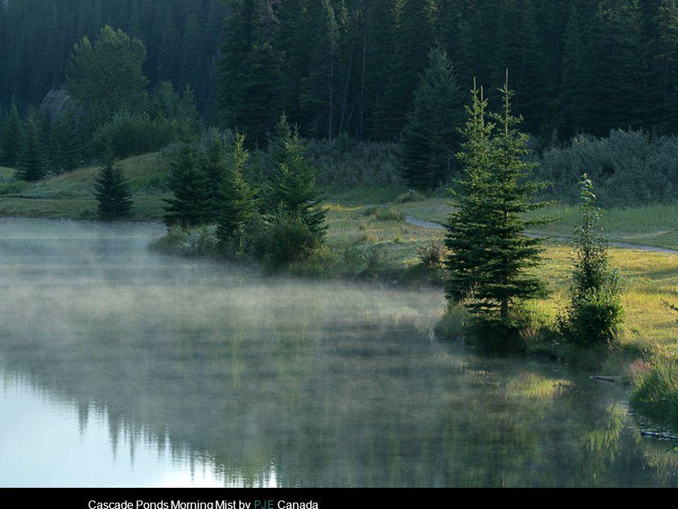 Cascade Ponds Morning Mist by PJE CanadaPJE
