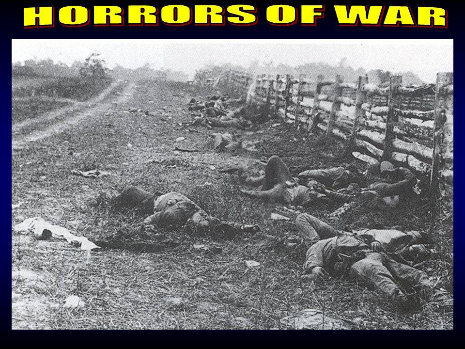 Horrors of War 3