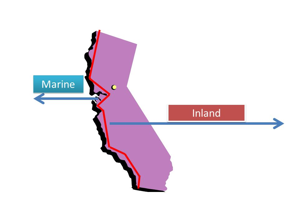 Marine Inland