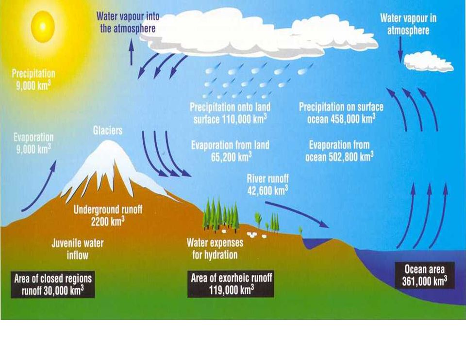 How does water leave the ground.