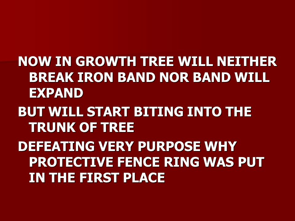 NOW IN GROWTH TREE WILL NEITHER BREAK IRON BAND NOR BAND WILL EXPAND BUT WILL START BITING INTO THE TRUNK OF TREE DEFEATING VERY PURPOSE WHY PROTECTIVE FENCE RING WAS PUT IN THE FIRST PLACE