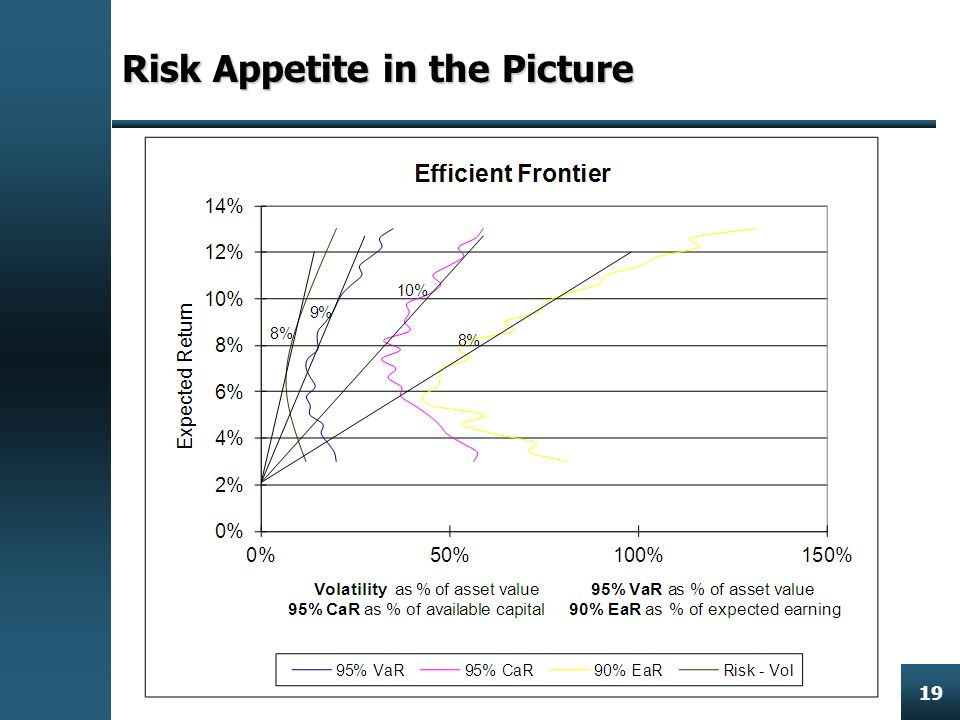 Enterprise Risk Management 19 Risk Appetite in the Picture