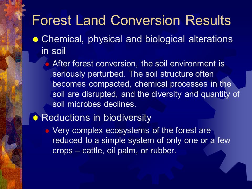 Forest Land Conversion Results  Chemical, physical and biological alterations in soil  After forest conversion, the soil environment is seriously perturbed.