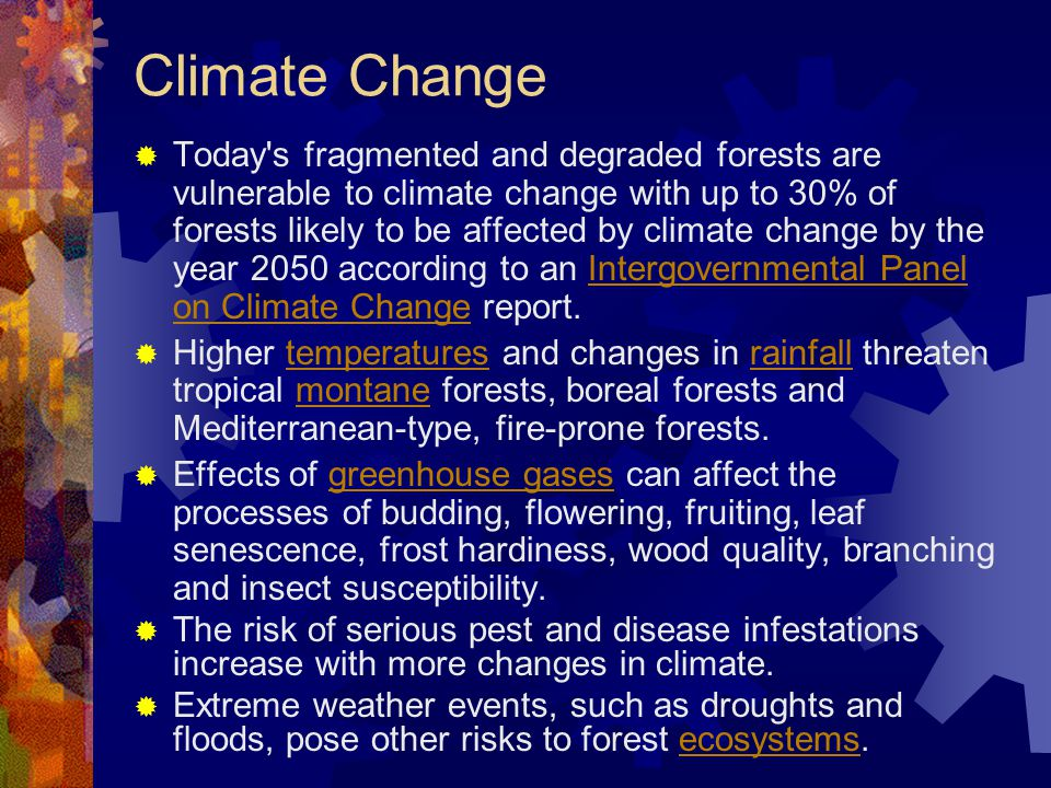 Demographic factors  A common myth of the 1990s was that increasing populations was a major underlying cause of forest decline.