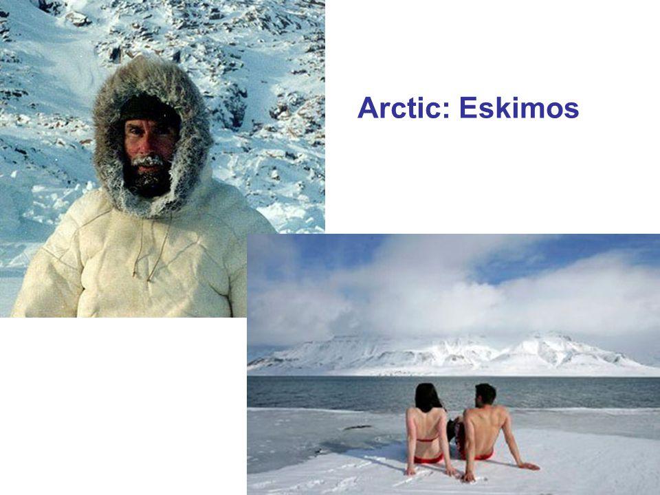 Arctic: Eskimos