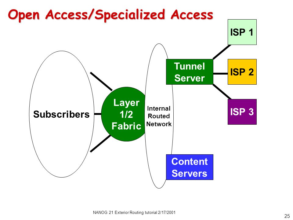 NANOG 21 Exterior Routing tutorial 2/17/2001 25 Open Access/Specialized Access Layer 1/2 Fabric Subscribers ISP 1 ISP 2 ISP 3 Internal Routed Network Tunnel Server Content Servers