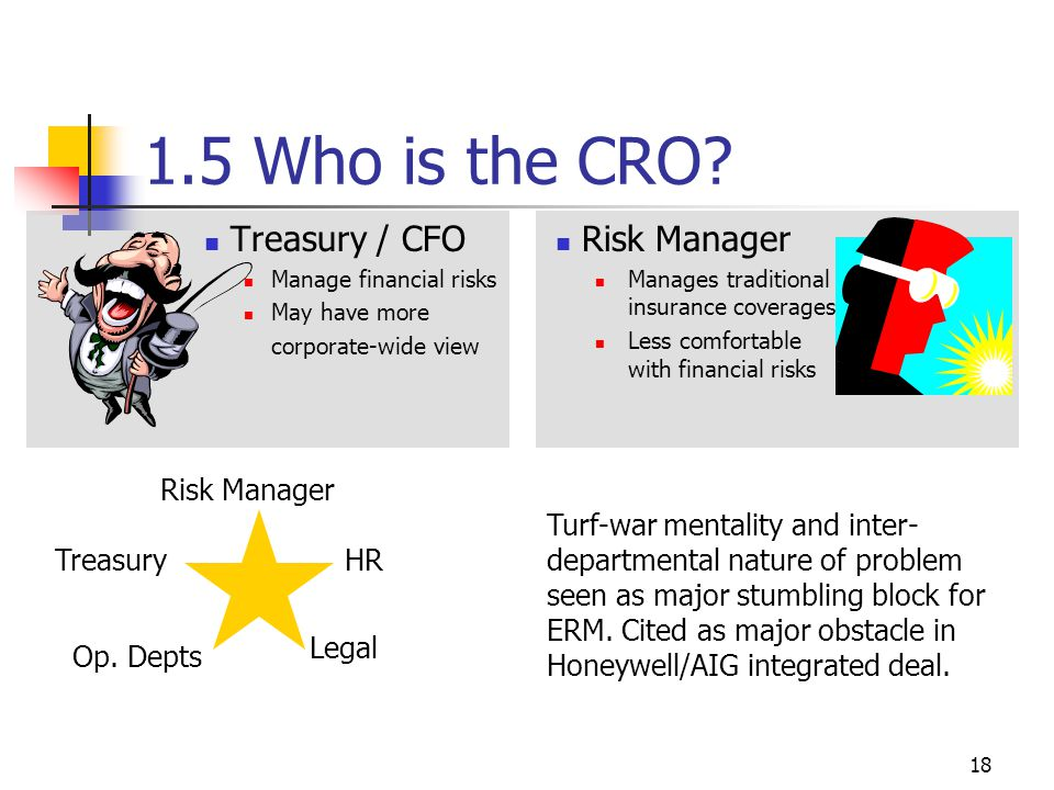 18 1.5 Who is the CRO.