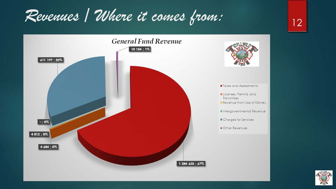 Revenues / Where it comes from: 12