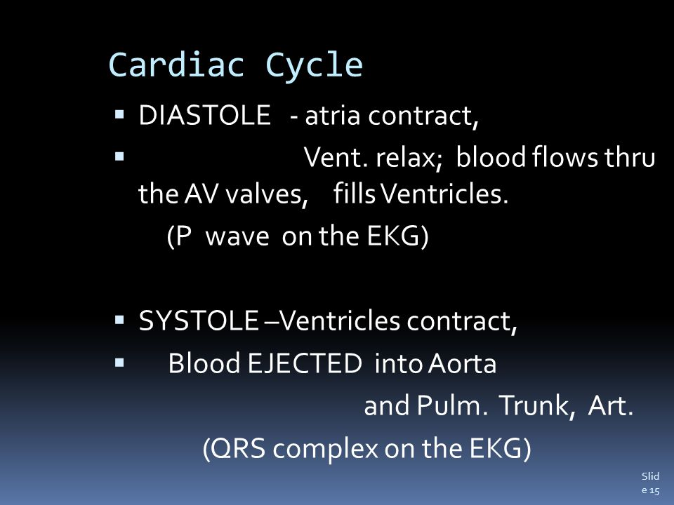 Slid e 15 Cardiac Cycle  DIASTOLE - atria contract,  Vent.