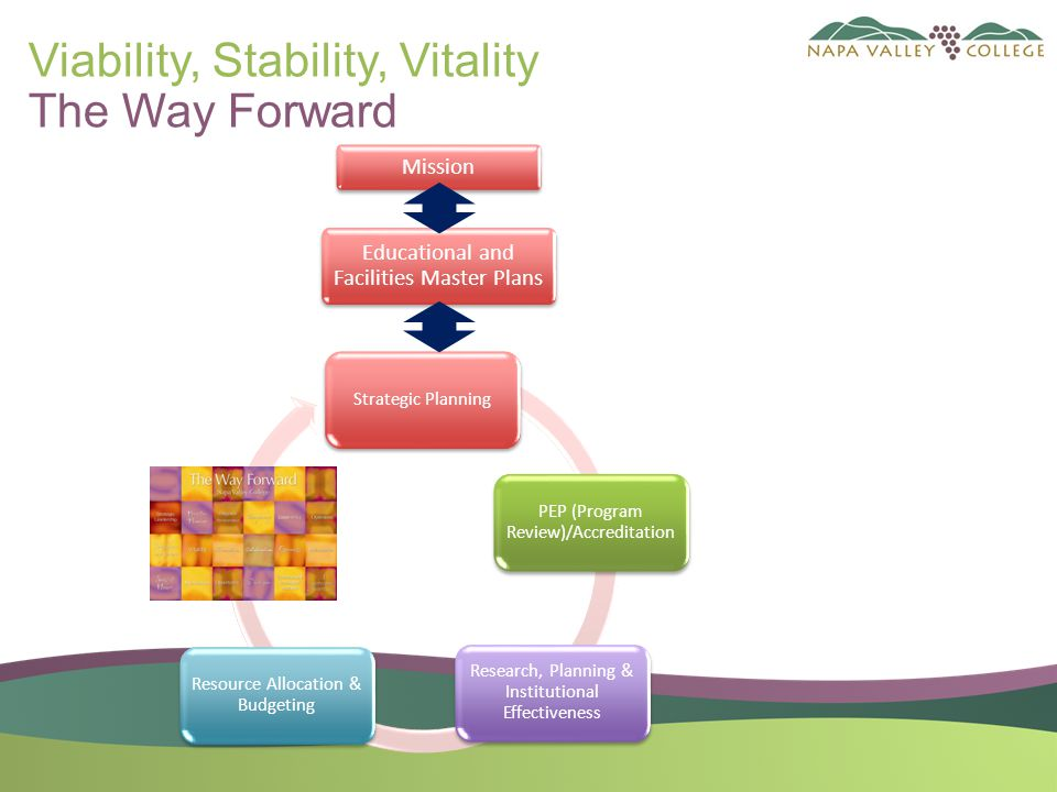 Viability, Stability, Vitality The Way Forward